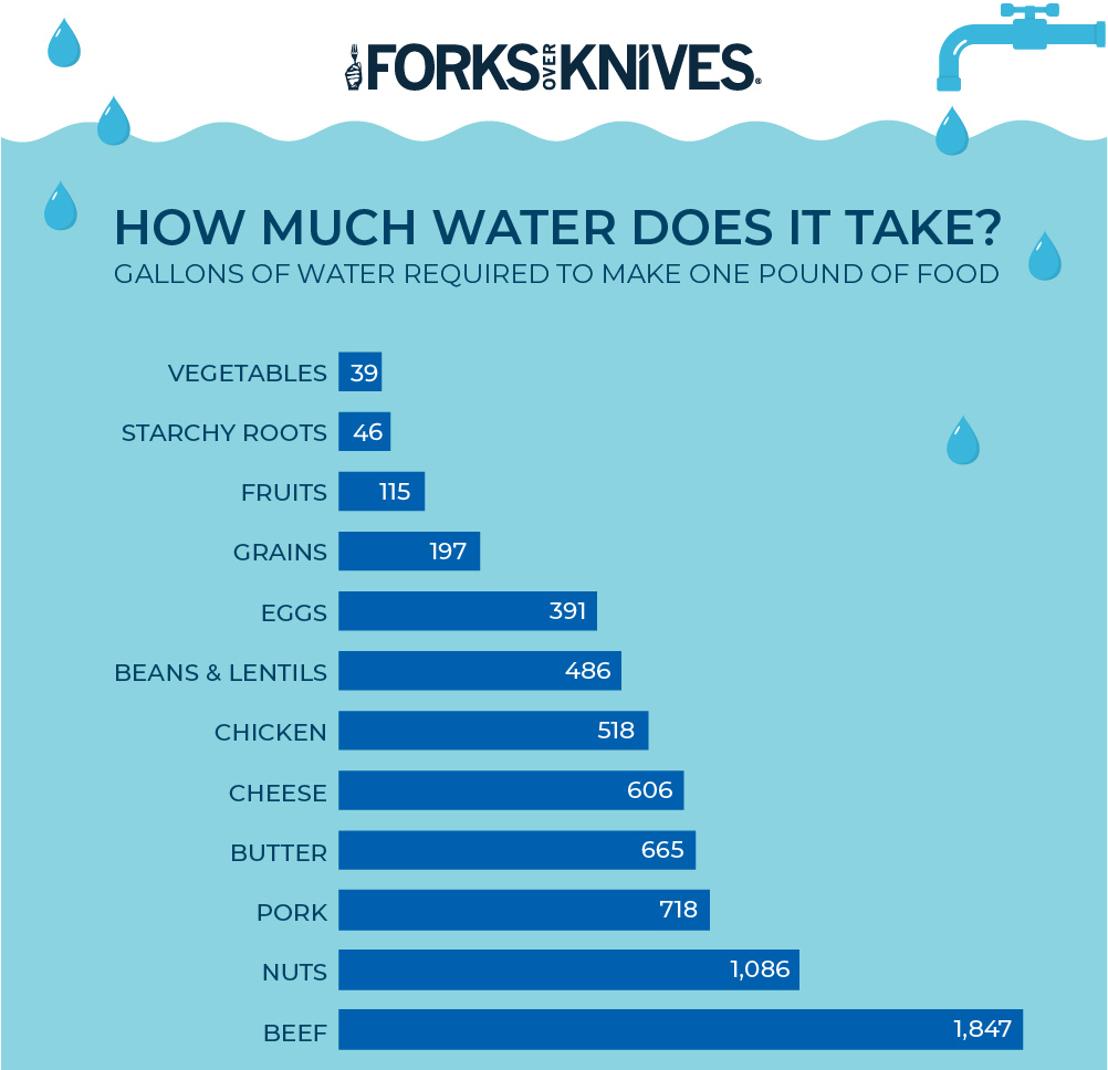Water use for meat and veggies